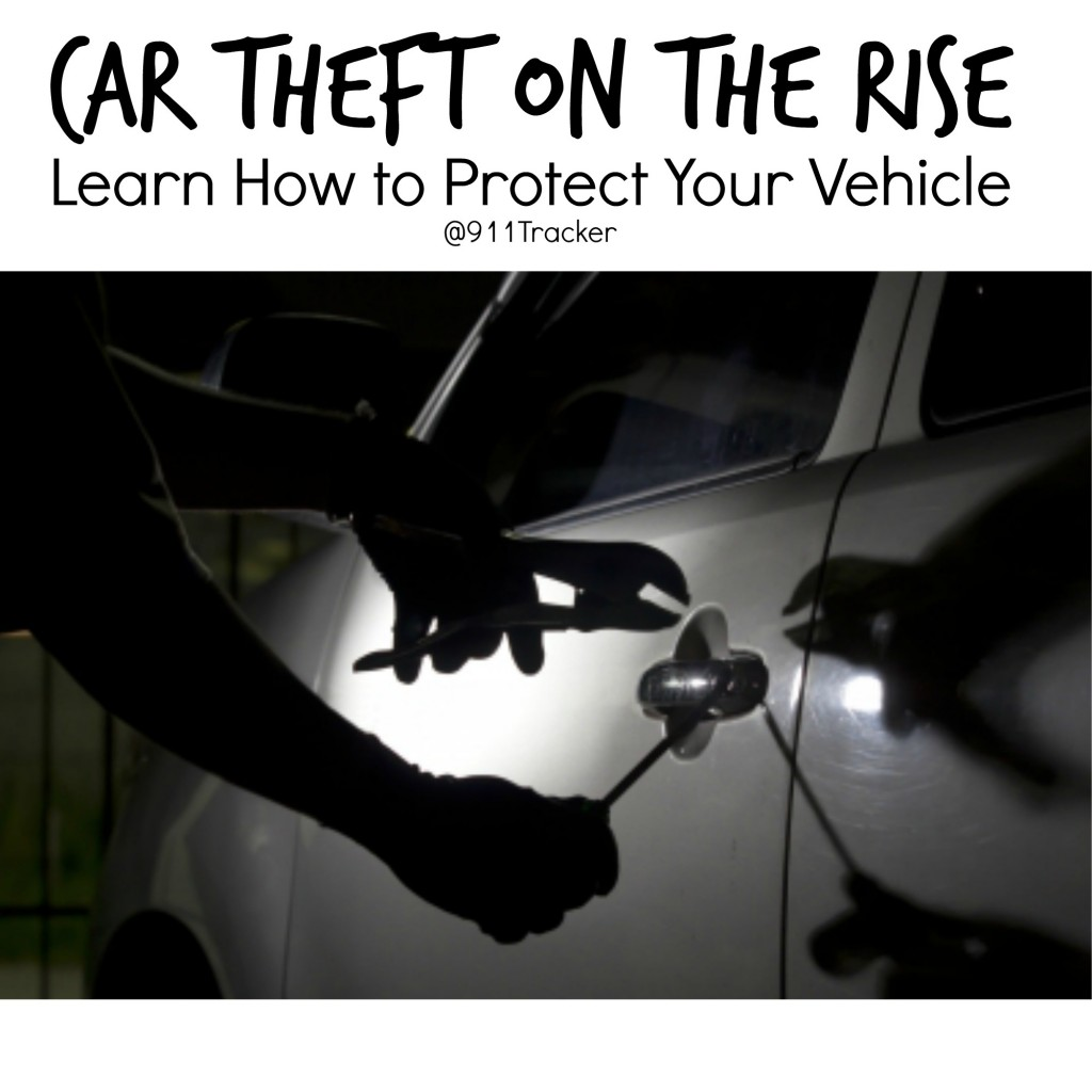 protect your vehicle